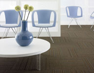 Shaw Wired Carpet Tile