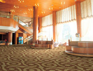 Joy Carpets Cocoon