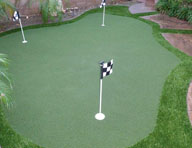 Elite Putting Green Turf