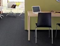 Shaw Creating Possibilities Waterproof Carpet