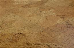 USFloors Wide Cork Tiles