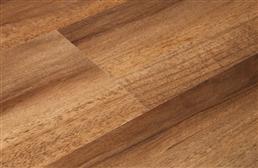 Shaw Floorte Valore Waterproof Vinyl Plank