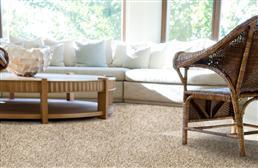 Phenix Rhapsody Carpet
