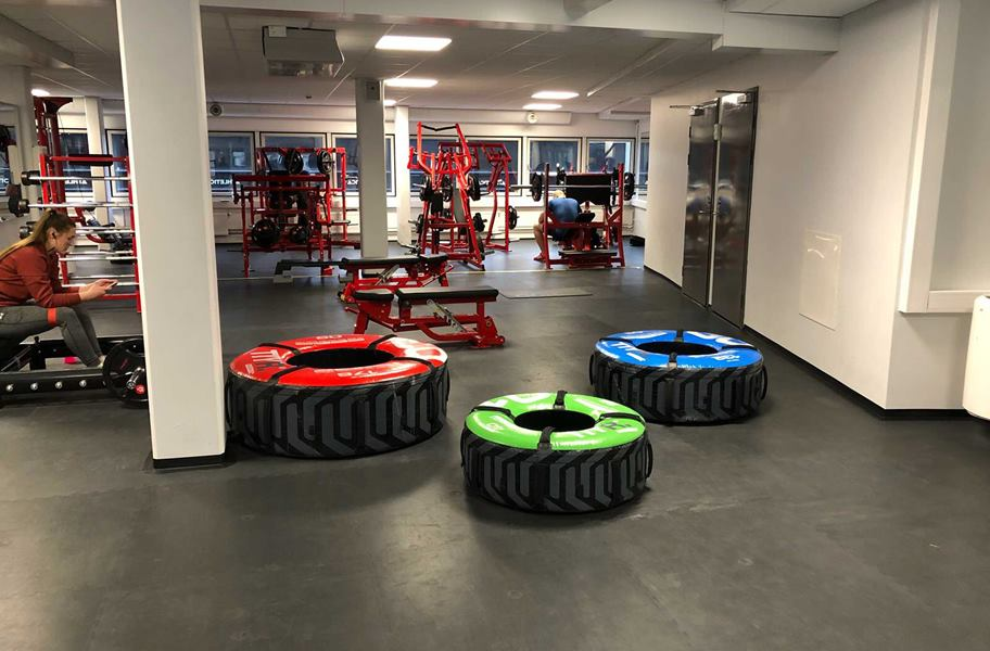 PAVIGYM Endurance Rubber Tiles