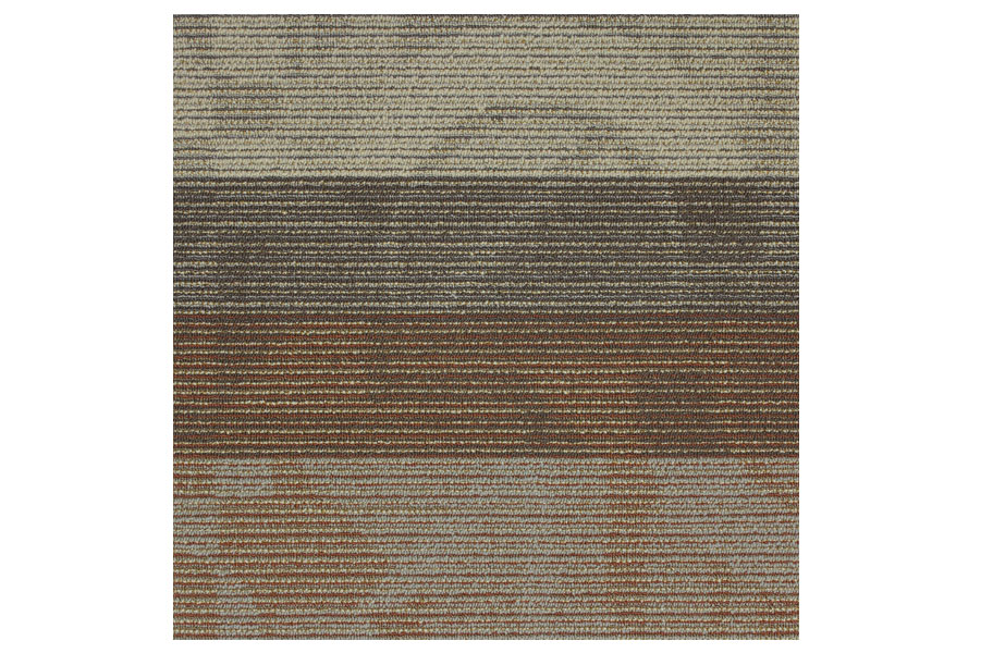 Shaw Feedback Carpet Tiles Wholesale Carpet Tile Squares