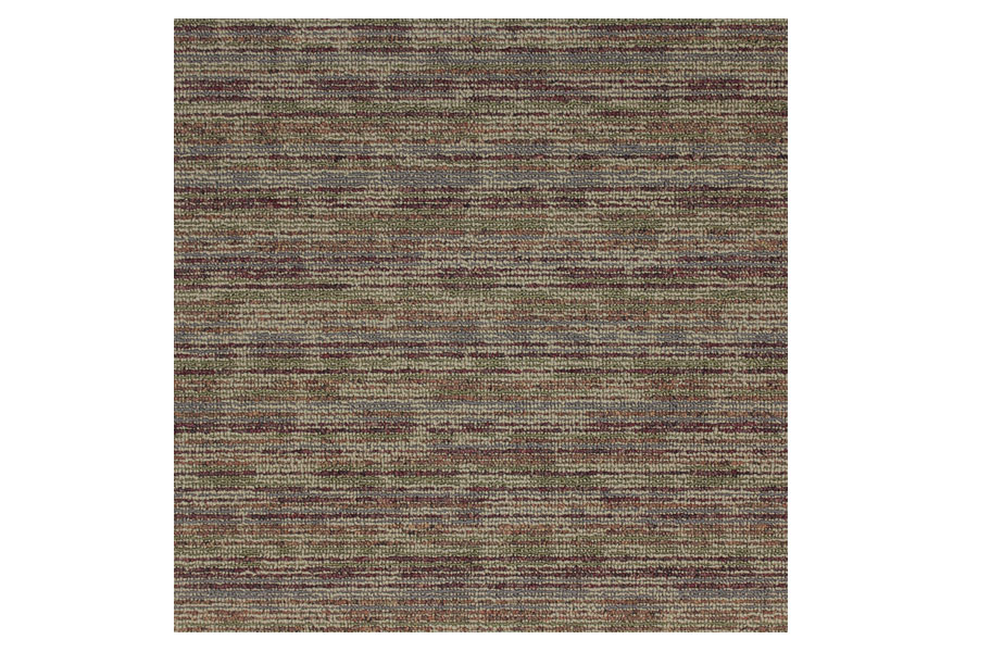 Shaw hook up carpet tiles quality discount carpet tiles - Shaw rugs discontinued ...