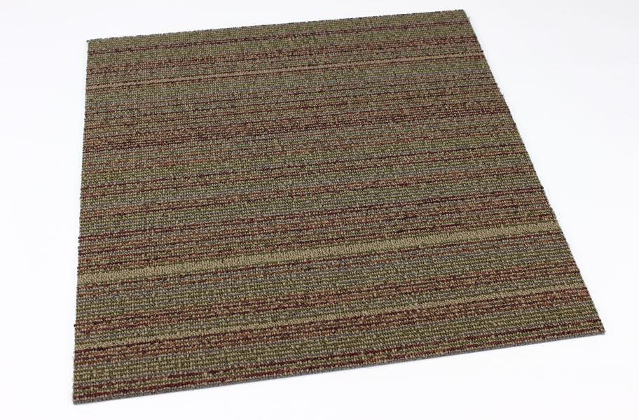 Shaw Wired Carpet Tiles Discount Modular Floor Tiles