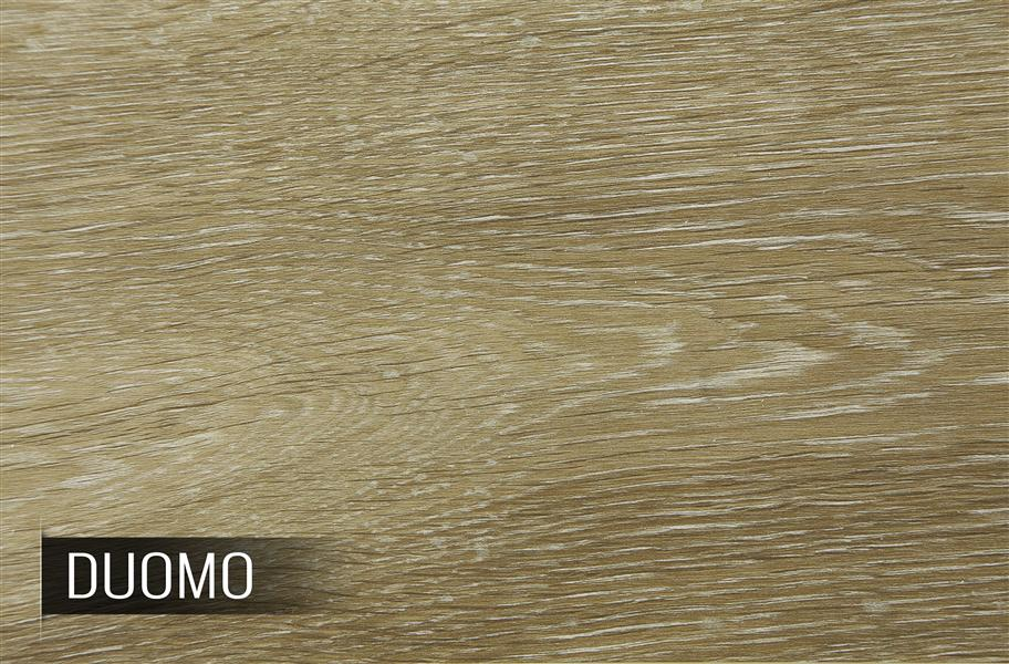 Shaw Floorte Premio Enhanced Vinyl Plank