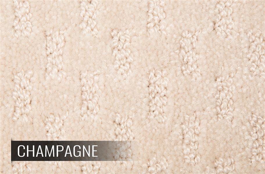 Mohawk Champion Carpet Stain Soil Resistant Carpet