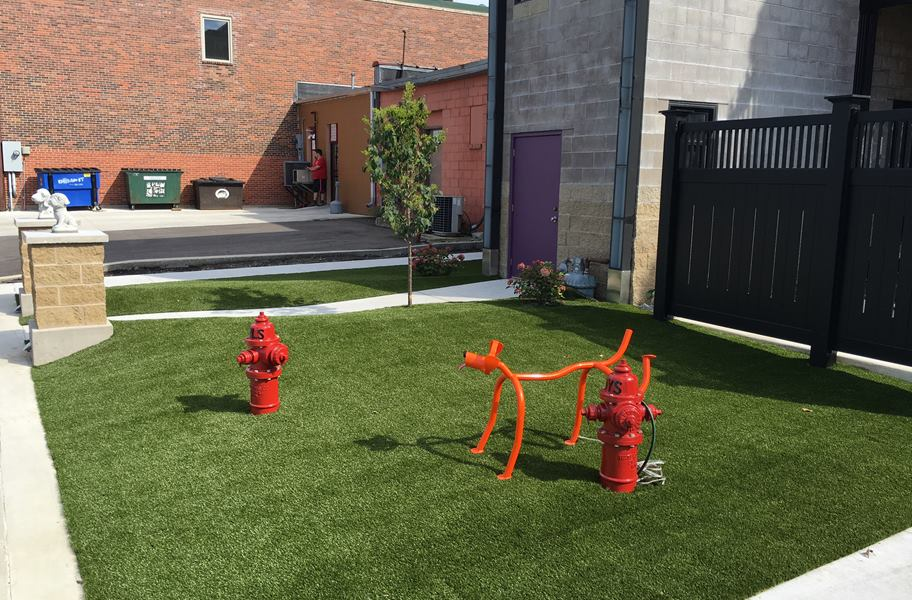 Summer Debut Turf Rolls Natural Grass Alternative