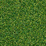 Lime/Field Green Premium Putting Green Turf Rolls