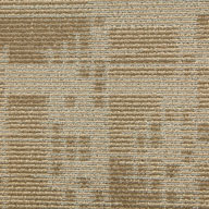 SandstoneSet In Motion Carpet Tile