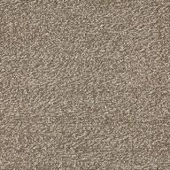 Bark Major Factor Carpet Tile