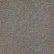 Iron Major Factor Carpet Tile