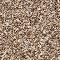 Tweed CoatPhenix Lakefront Carpet