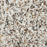 Wild Oats Phenix Little River Carpet