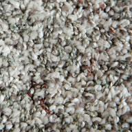 Gus Phenix Rhapsody Carpet