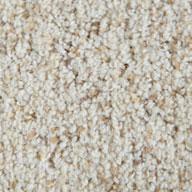Freshwater Shell Phenix Griffith Park Carpet