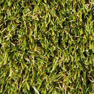 Natural Green Fresh Rye Turf Rolls