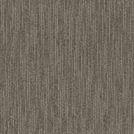 Masterful Shaw Dynamo Carpet Tile
