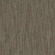 Scholarly Shaw Dynamo Carpet Tile