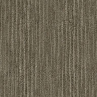 Scholarly Shaw Genius Carpet Tile
