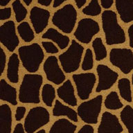 Tall Order Shaw Giraffe