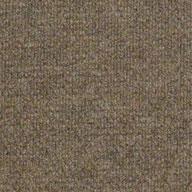 Sierra Sand Shaw Succession II Outdoor Carpet