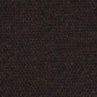 Dark Earth Shaw Succession II Outdoor Carpet