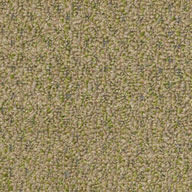 Wheat Grass Shaw Gardenscape Outdoor Carpet
