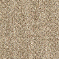 Tree House Shaw Natural Path Outdoor Carpet
