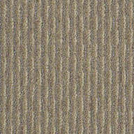 Bayou BeigeShaw Pattern Play Outdoor Carpet
