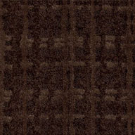 Rich ChocolateShaw Pure Envy Carpet