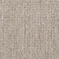 Natural GreyShaw Have Fun Waterproof Carpet
