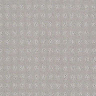 Metallic Shaw Creating Possibilities Waterproof Carpet