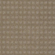 Stately Shaw Creating Possibilities Waterproof Carpet