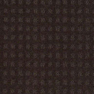 Vintage Shaw Creating Possibilities Waterproof Carpet