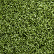 Field Green w/ Cushioning Elevate Golf Turf Rolls