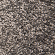 Contemporary GrayAir.o New Beginnings I Carpet with Pad
