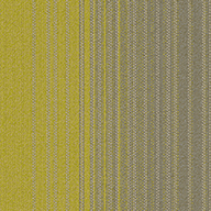 Exposure Fluid Carpet Tile