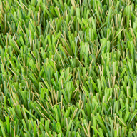 Natural Green Avalon Turf Rolls