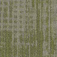 EmphasisShaw Harmony Carpet Planks