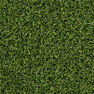 Field/Forest GreenPremium Putting Green Turf Rolls