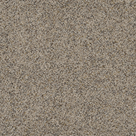 SandpointPiece of Cake Carpet Tile with Pad
