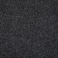 Black IceOceanside Outdoor Carpet