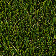 Field Green/Olive GreenBeverly Turf Rolls