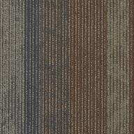 Co-ChannelShaw Feedback Carpet Tile