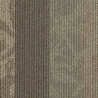 Frequency Shaw Feedback Carpet Tile