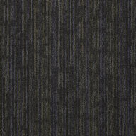 Shaw Floors Philadelphia Carpet Tile - Hookup 24 X 24