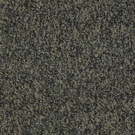 Boundless Shaw No Limits Carpet Tile
